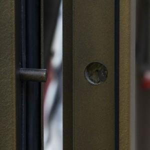 Противосъемочные штыри двери ДПМ-2